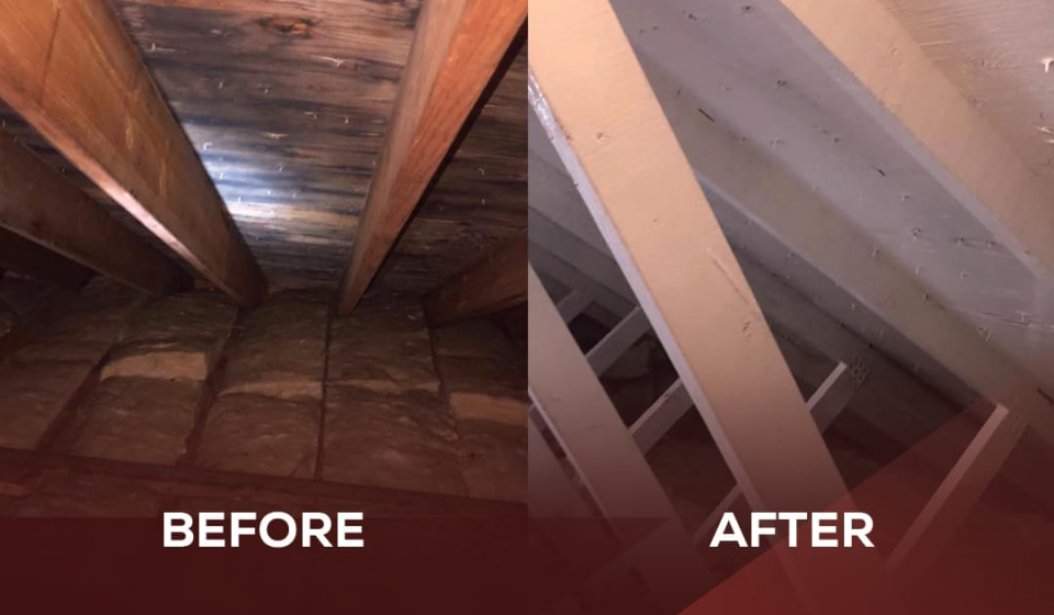 before and after image of a mold job competed